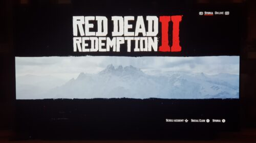Red Dead Redemption 2 photo review