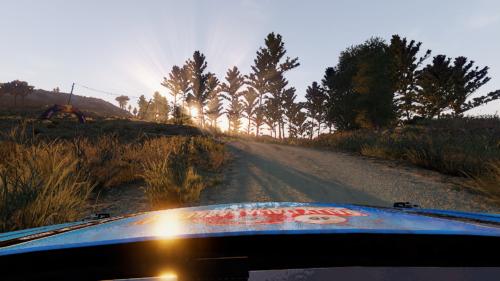 WRC 9 FIA World Rally Championship photo review