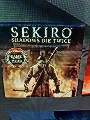 Sekiro Shadows Die Twice photo review
